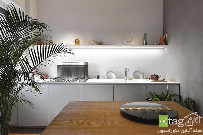 Apartment-interior-filled-with-natural-greenery (11)