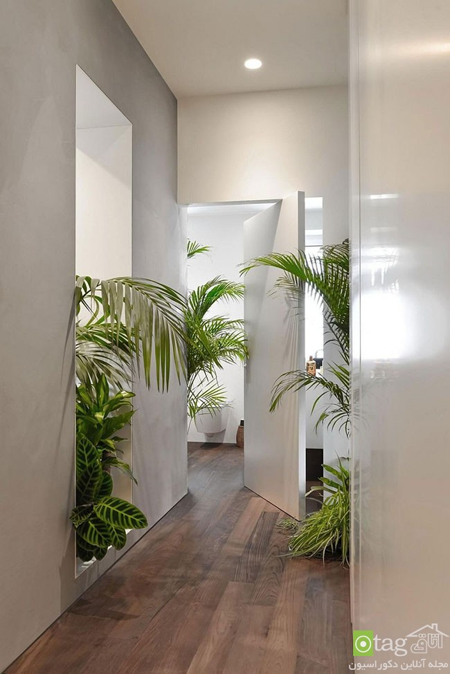Apartment-interior-filled-with-natural-greenery (12)