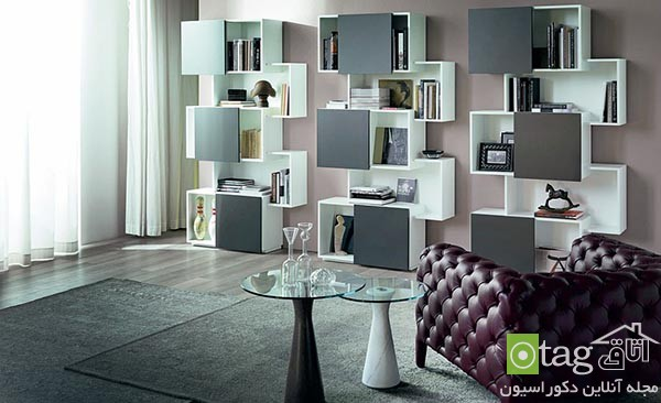Beautiful-contemporary-bookshelf-design-ideas (9)