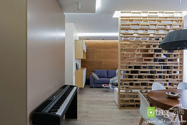 Ingenious-modern-apartment-with-wooden-partition (1)