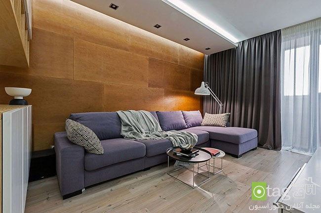 Ingenious-modern-apartment-with-wooden-partition (13)