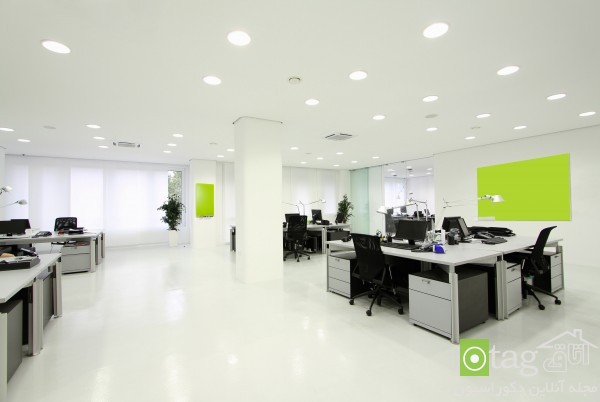 Interior_Office_Design-ideas (5)