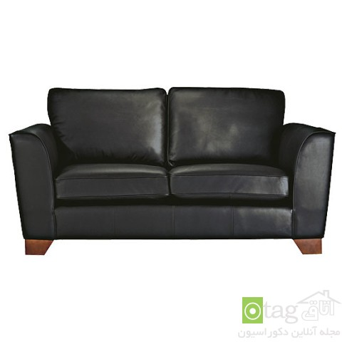 Leather-Couch-design-ideas (15)