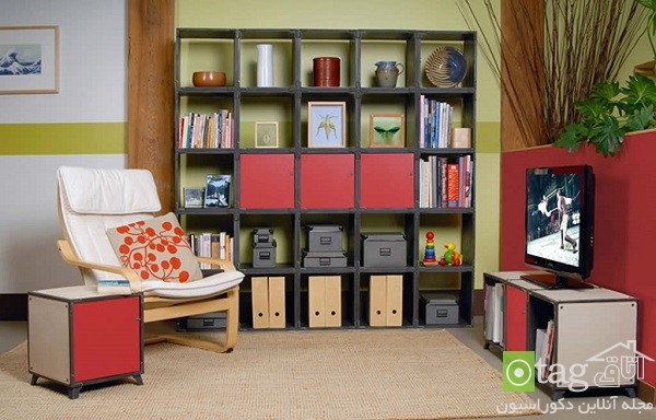 Living-Room-Storage-ideas (2)