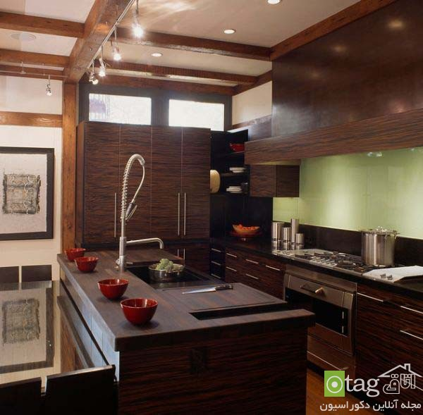 Modern-kitchen-designs-for-coocking-enthusiast (1)