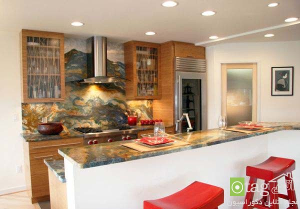 Modern-kitchen-designs-for-coocking-enthusiast (10)