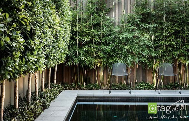Privacy-hedge-created-by-plants (1)