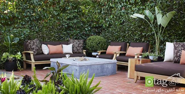 Privacy-hedge-created-by-plants (15)
