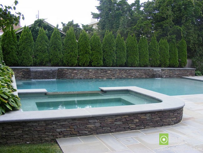 Privacy-hedge-created-by-plants (18)