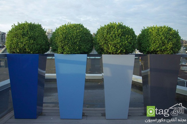 Privacy-hedge-created-by-plants (5)