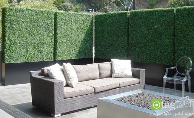 Privacy-hedge-created-by-plants (7)