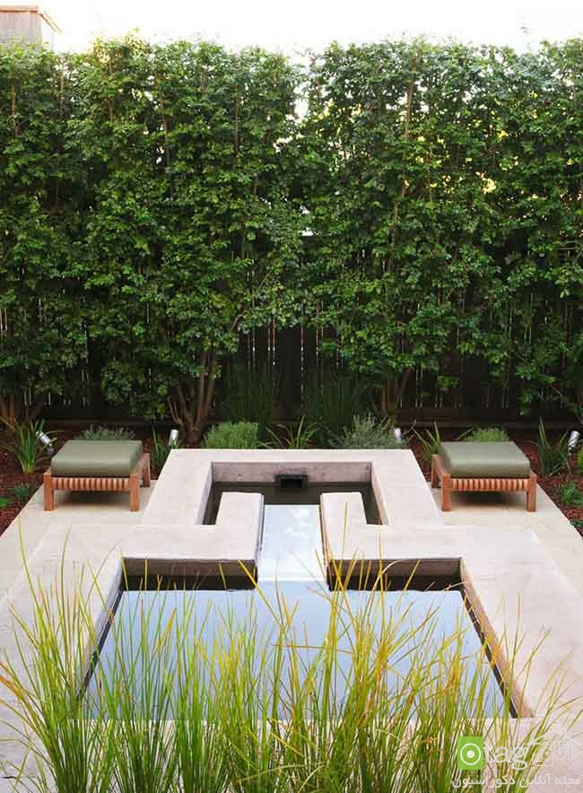 Privacy-hedge-created-by-plants (9)
