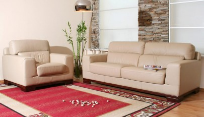 Red-Carpet-Ideas-For-Modern-Living-Room