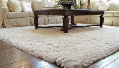 Rugs-for-Living-Room-designs (13)