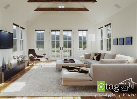 Rugs-for-Living-Room-designs (2)