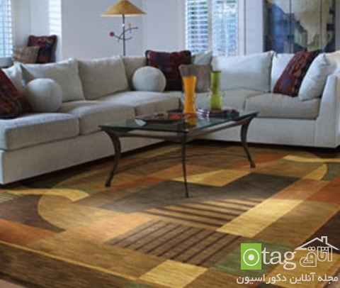 Rugs-for-Living-Room-designs (4)