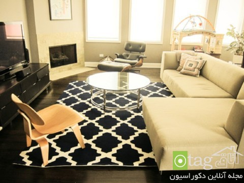 Rugs-for-Living-Room-designs (6)