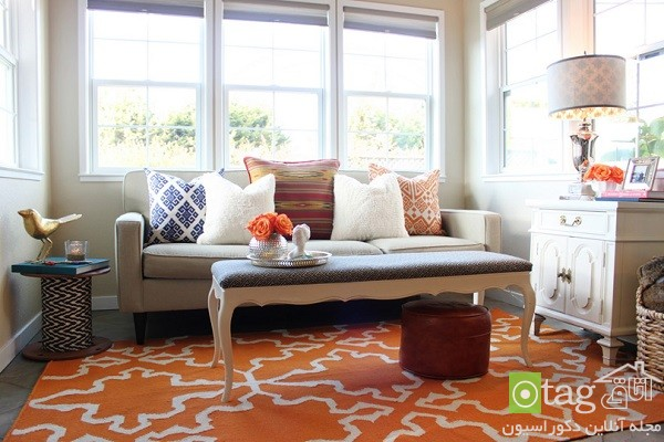 Rugs-for-Living-Room-designs (8)