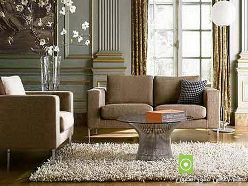 Rugs-for-Living-room-design-ideas (1)
