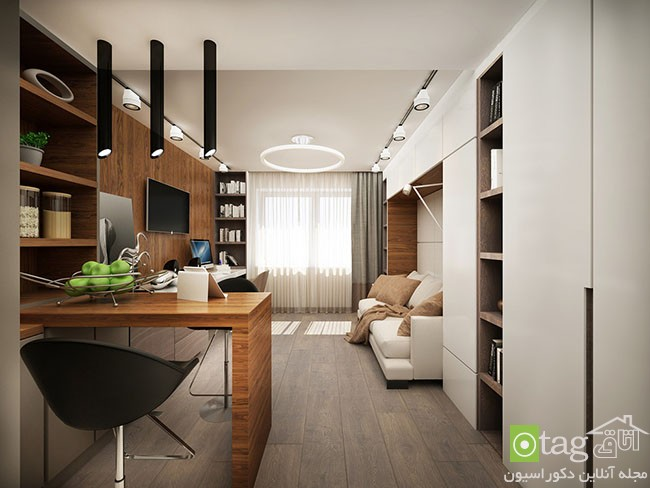 Tiny-Apartment-design-ideas (12)