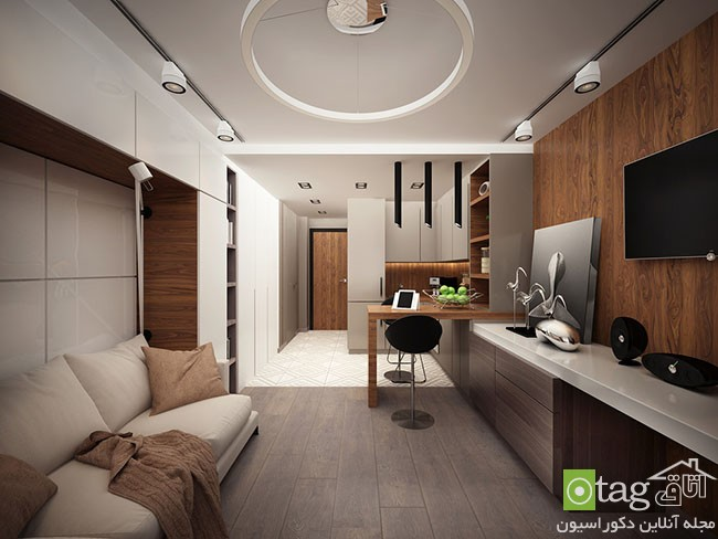 Tiny-Apartment-design-ideas (16)