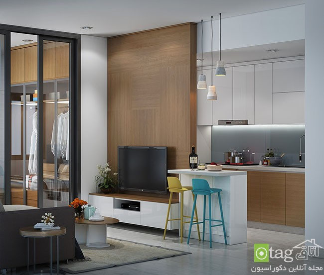 Tiny-Apartment-design-ideas (4)
