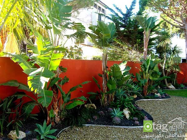 Tropical-plants-in-patio-and-yard-decoration (2)