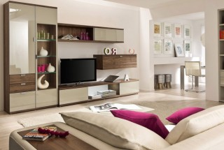 artful-storage-in-modern-beige-living-room-665x440
