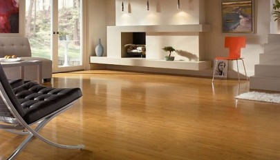 contepmorary-living-room-with-laminate-floors
