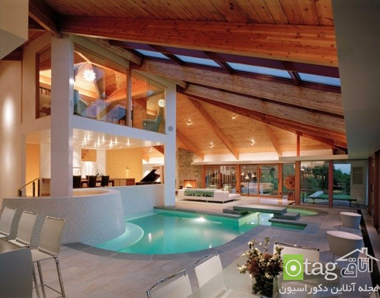 interior-swimming-pool-designs (9)