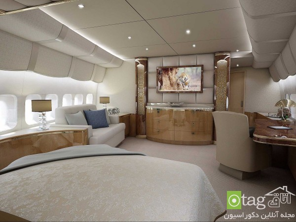 luxury-home-inside-private-airplane-design (2)