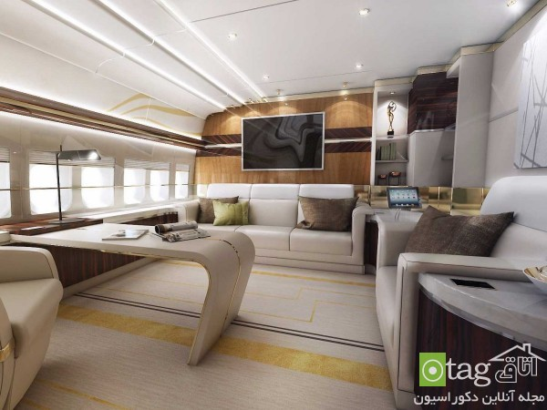 luxury-home-inside-private-airplane-design (7)