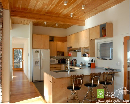 mdf-and-wood-kitchen-cabinet-designs (12)
