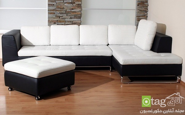 modern-and-classic-sofa-designs (10)