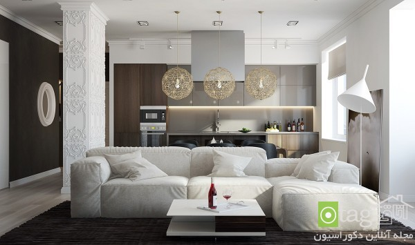 modern-sofa-designs-in-living-room (3)