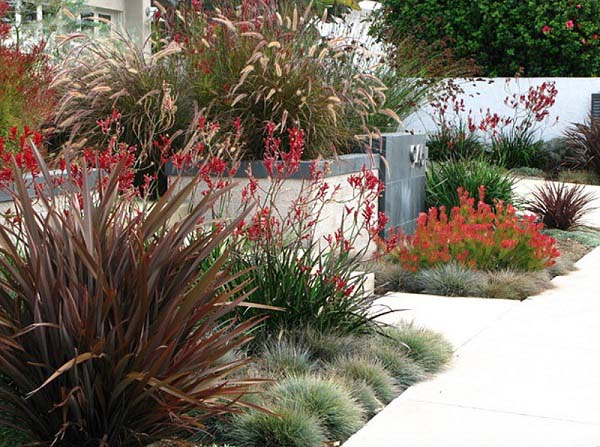 outdoor-modern-landscape-with-cheap-budget (10)