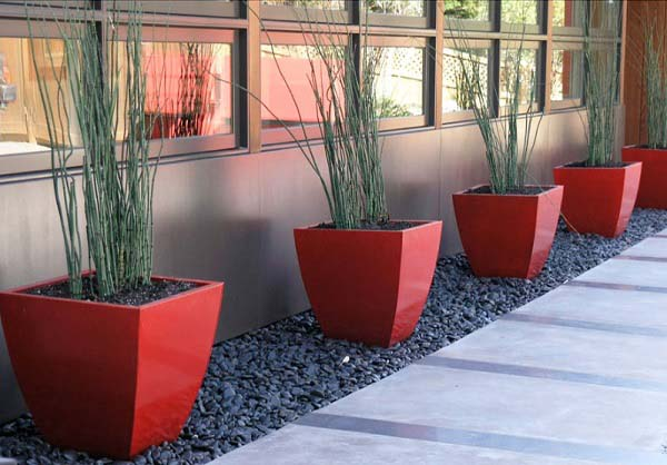 outdoor-modern-landscape-with-cheap-budget (5)