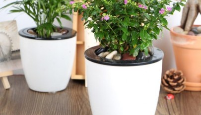 self-watering-planter-ideas (8)