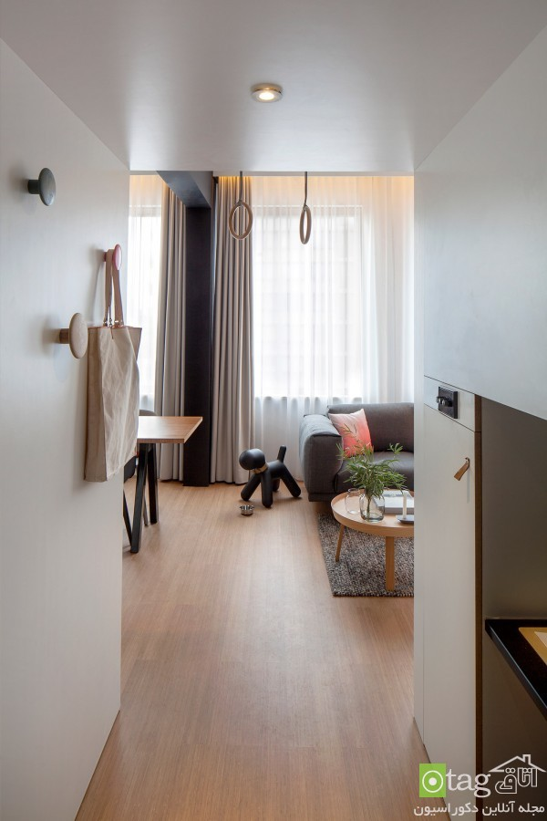 small-apartment-design-and-decoratio (5)