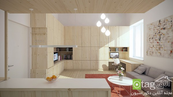 small-apartment-interior-design-ideas (3)