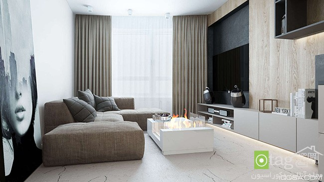 small-apartment-with-luxury-interior-design (1)