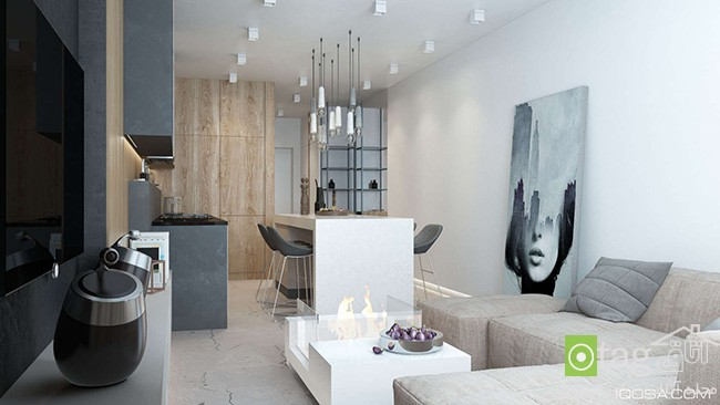 small-apartment-with-luxury-interior-design (2)