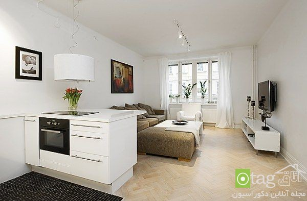 small-apartments-designs-ideas-image (7)