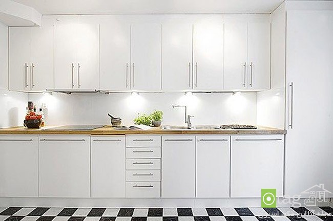 white-kitchen-cabinet-designs (1)