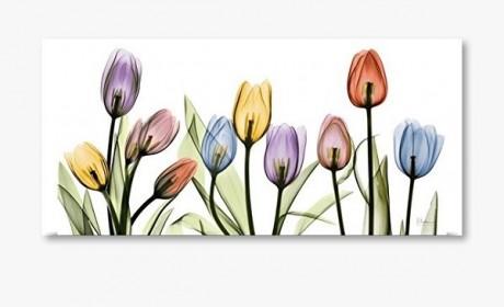 مدل های جدید تابلو دیواری فانتزی طرح گل در 28 عکس متفاوت