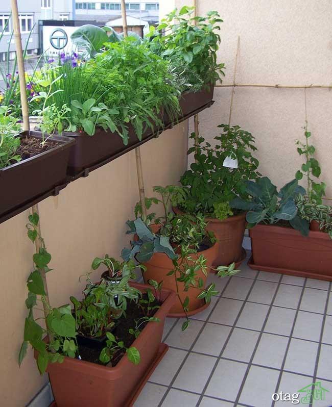 تزیین-بالکن-با-گیاهان (25)