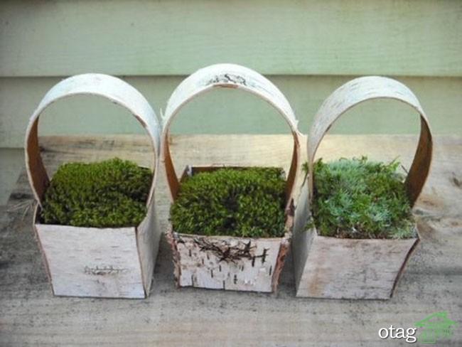 خلاقیت-با-چوب-درخت (5)