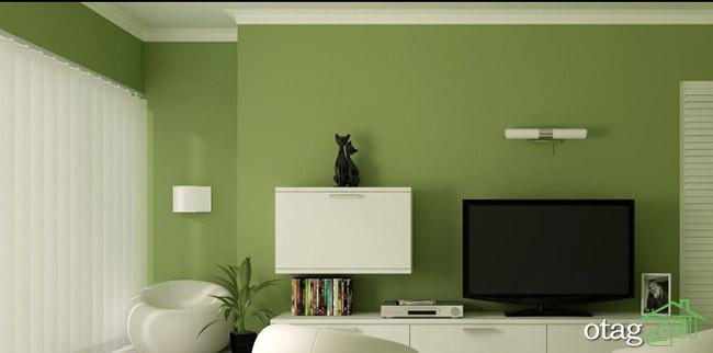 رنگ-سبز-در-اتاق-نشیمن (6)