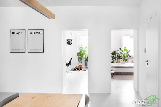 طراحی-داخلی-آپارتمان (16)