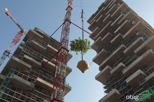 معماری-طبیعت-گرا (12)